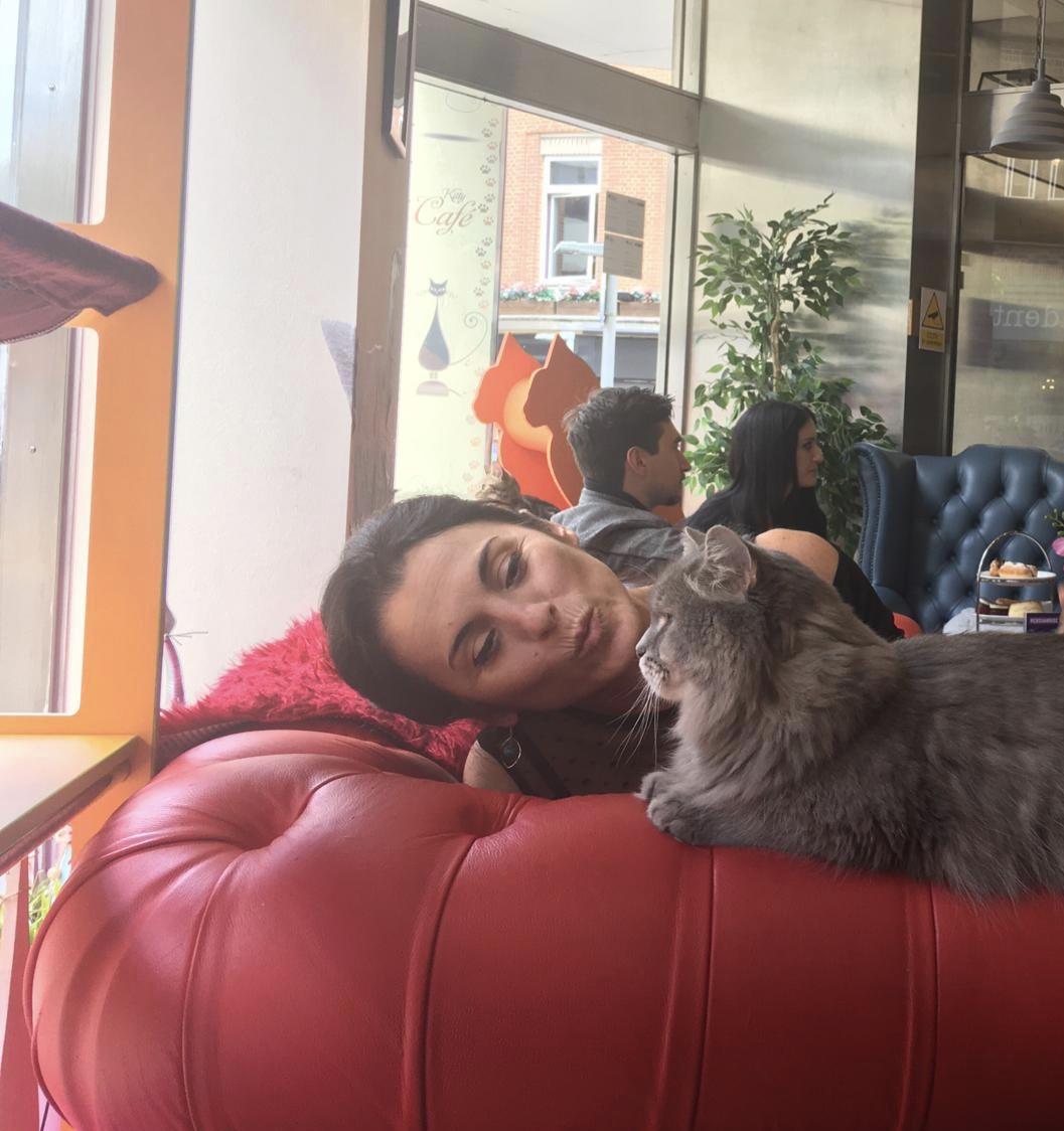 Sonia Gallucci Cat