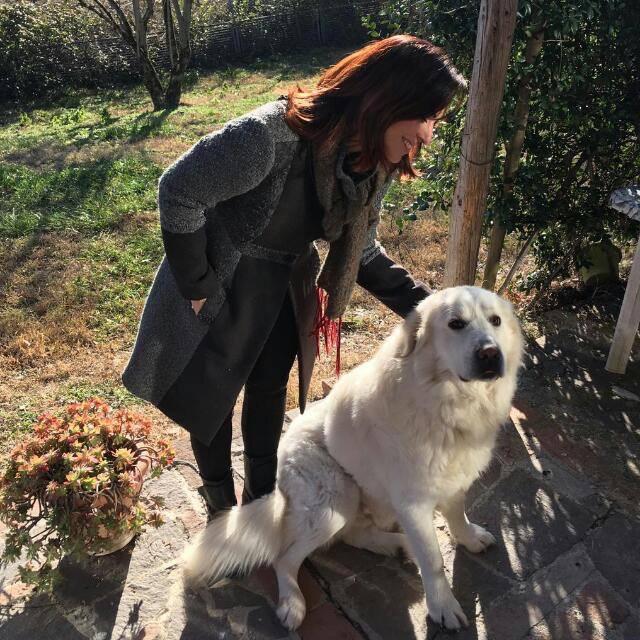 Sonia Gallucci Counselor Dog